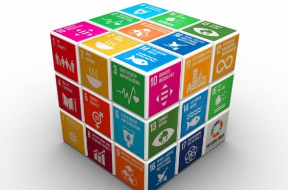 VARIO Advisory Report 20: 'The Sustainable Development Goals – Opportunities for Flemish companies'